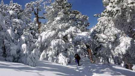 raquetas-de-nieve-guadarrama