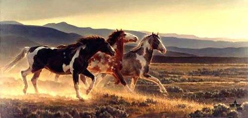 caballos-salvajes